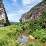 Indonesie-partir-Sumatra-balade-paysage-vegetation3