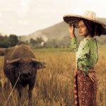 Indonesie-decouverte-ile-Sumatra-fille-riziere-culture2