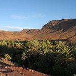 Oasis de Fint-voyager-maroc-palmier-tourisme solidaire-au coeur des peuples
