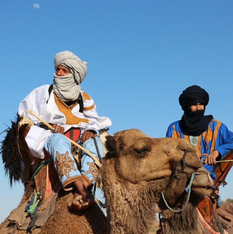 CircuitauMaroc-desert-dunes-chameaux