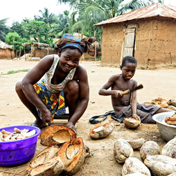 Nature togo village region maritime