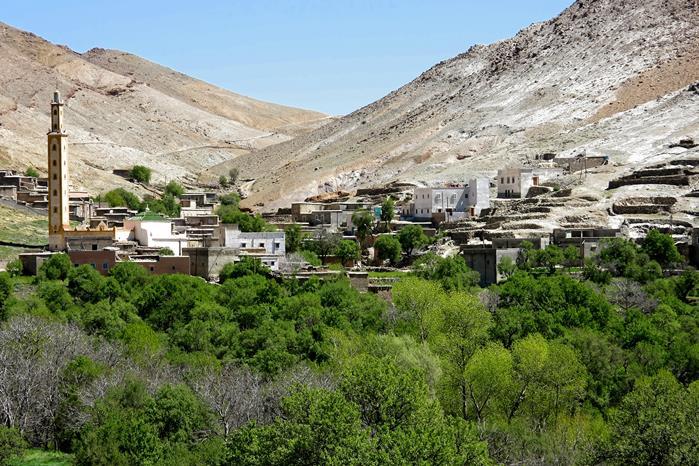 safran taliouine