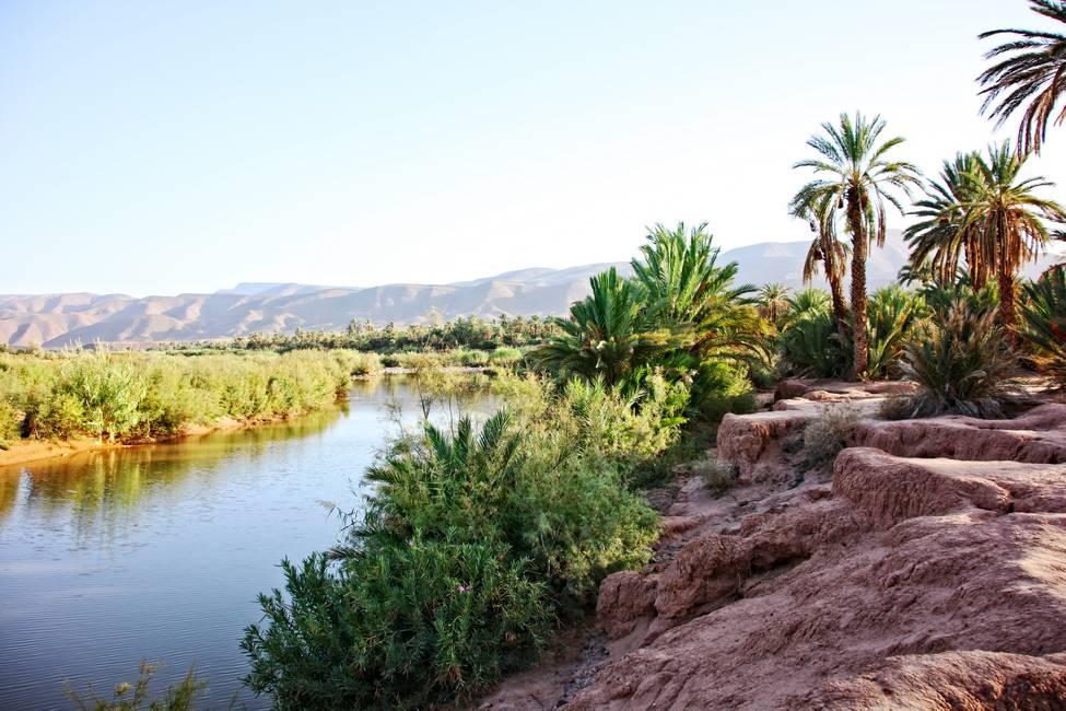 Rives du fleuve Drâa à Tamnougalt, au Maroc.