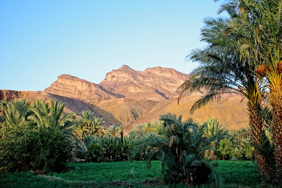 Le Djebel Kissane, montagne de l'anti-Atlas dans la vallée du Drâa au Maroc