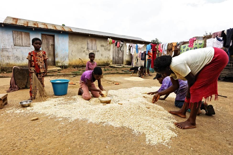 Une famille qui tri du riz dans un village au Togo