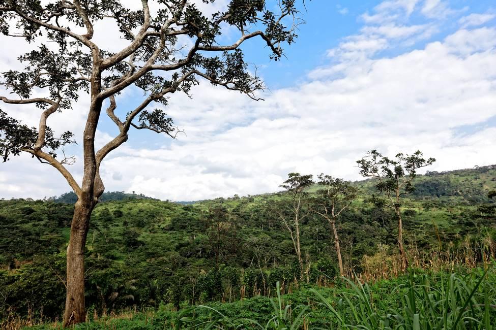 Paysage de la région de Kpalimé au Togo