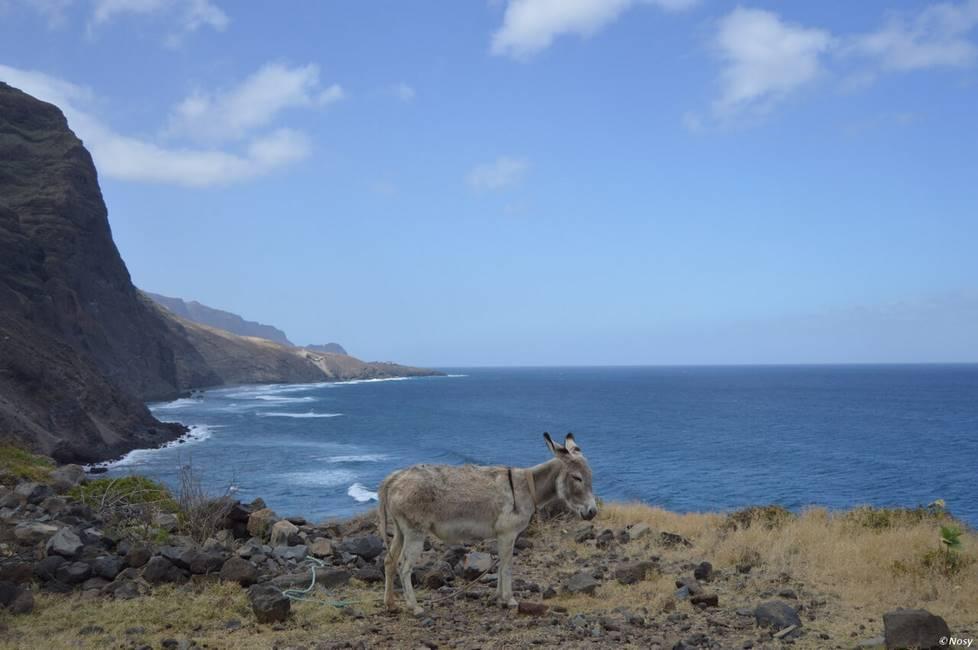 Paysage de bord de mer sur l'île de Santo Antao au Cap-Vert