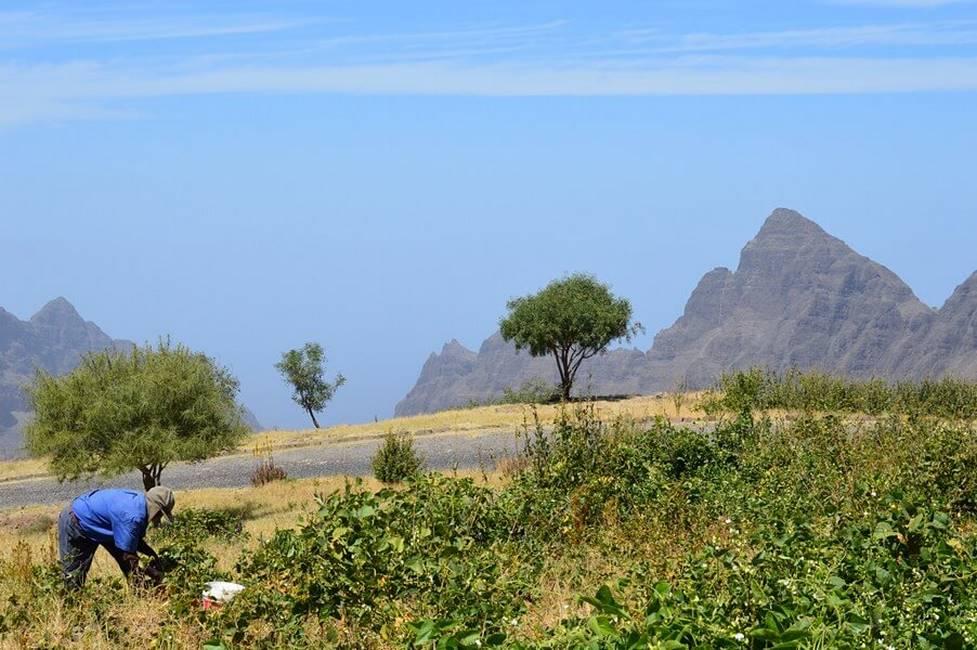 Paysage sur l'île de Santo Antao au Cap-Vert