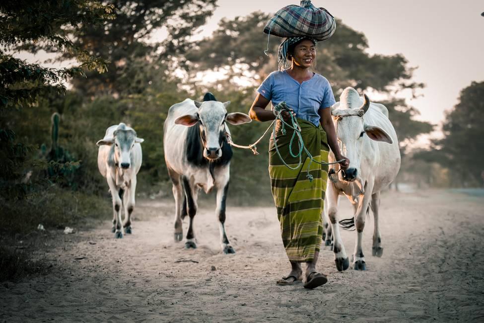 Scène de vie dans un village en Birmanie