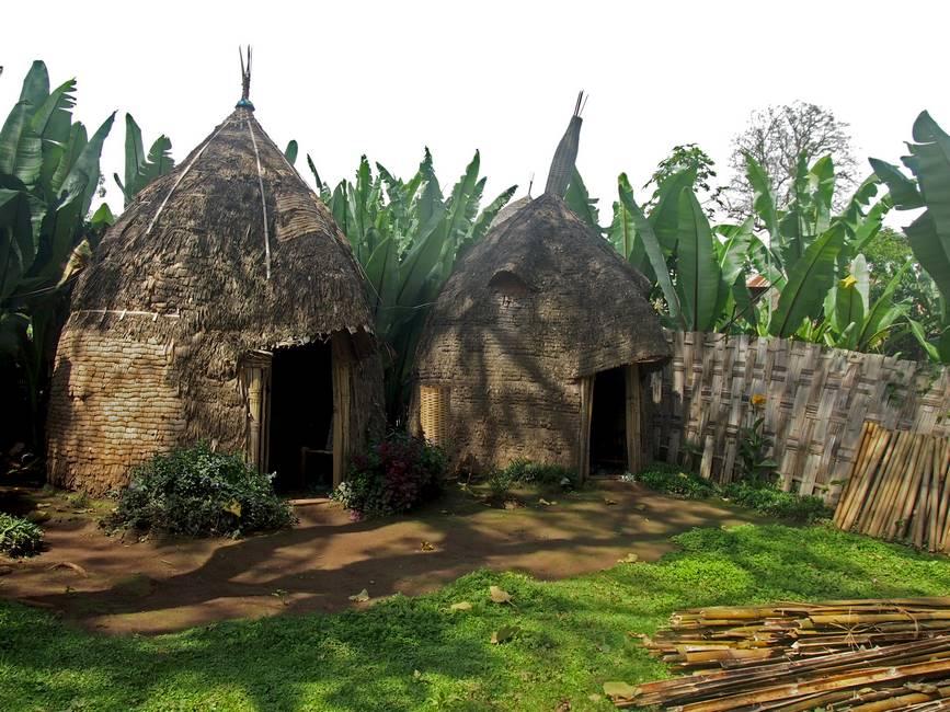 Cases traditionnelles de l'ethnie Dorze au sud de l'Ethiopie