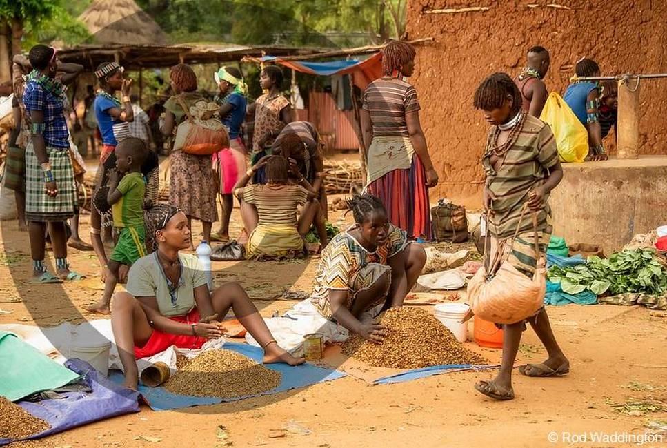 Vendeuses de café sur un marché au sud de l'Ethiopie