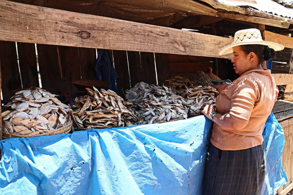 Marchande de poissons séchés sur le marché d'Ambatolampy à Madagascar