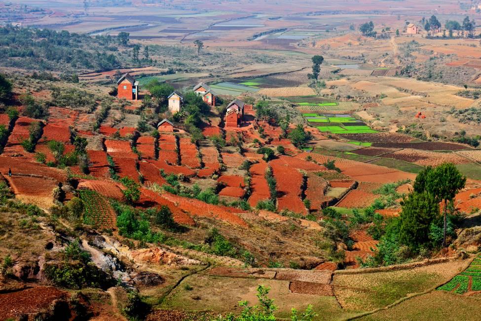 Paysage de rizières en terrasse dans un village de terre rouge à Madagascar