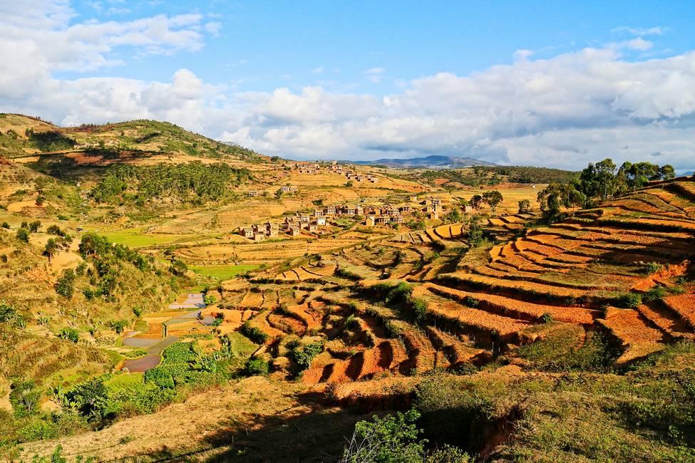 Paysages de rizières dans la région des hautes terres au centre de Madagascar