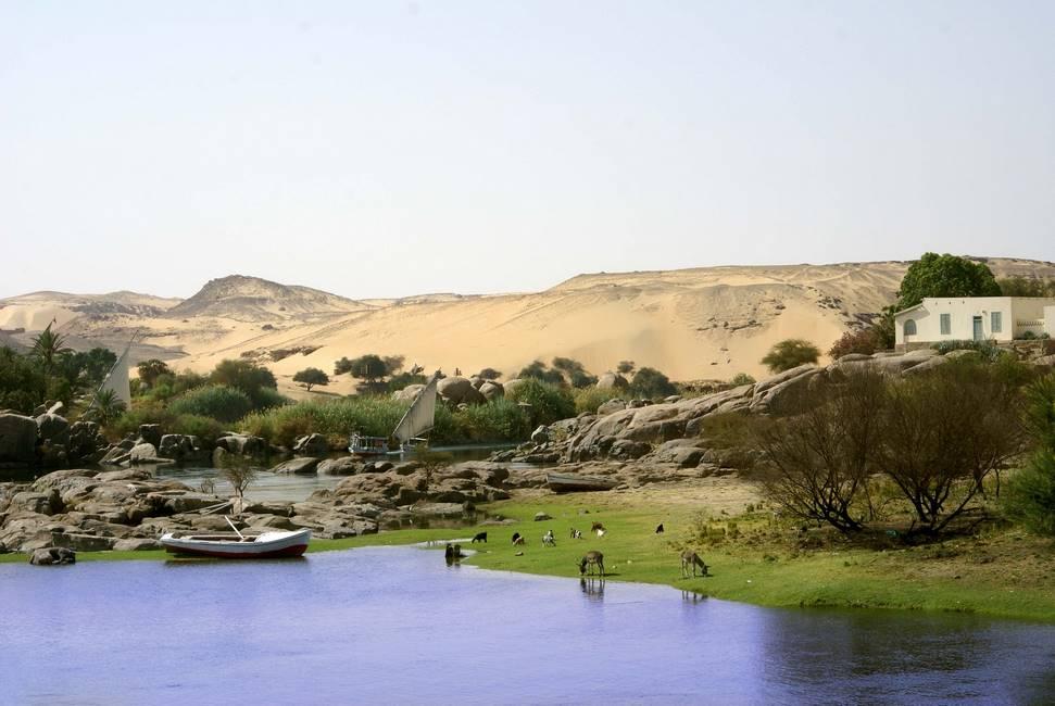 Rives du Nil proche d'Assouan au sud de l'Egypte