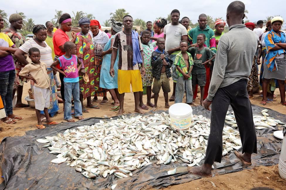 Poissons issus de la pêche traditionnelle au filet au Togo