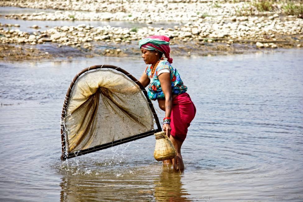 Pêche à la crevette à Bardia dans le Téraï au Népal