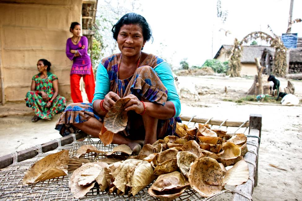 Scène de vie de l'ethnie Tharu à Bardia dans le Téraï au Népal