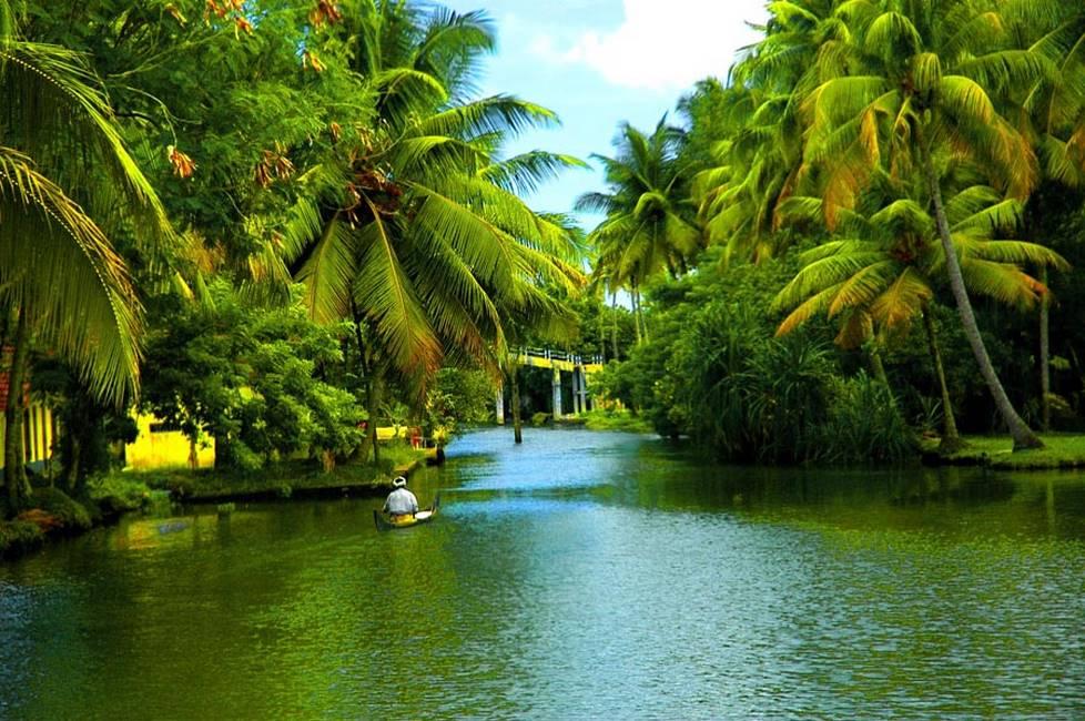 Voie de navigation pour les backwaters au Kérala au sud de l'Inde