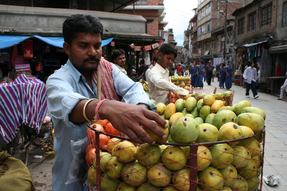 Vendeur de fruits ambulant à Katmandou, Népal
