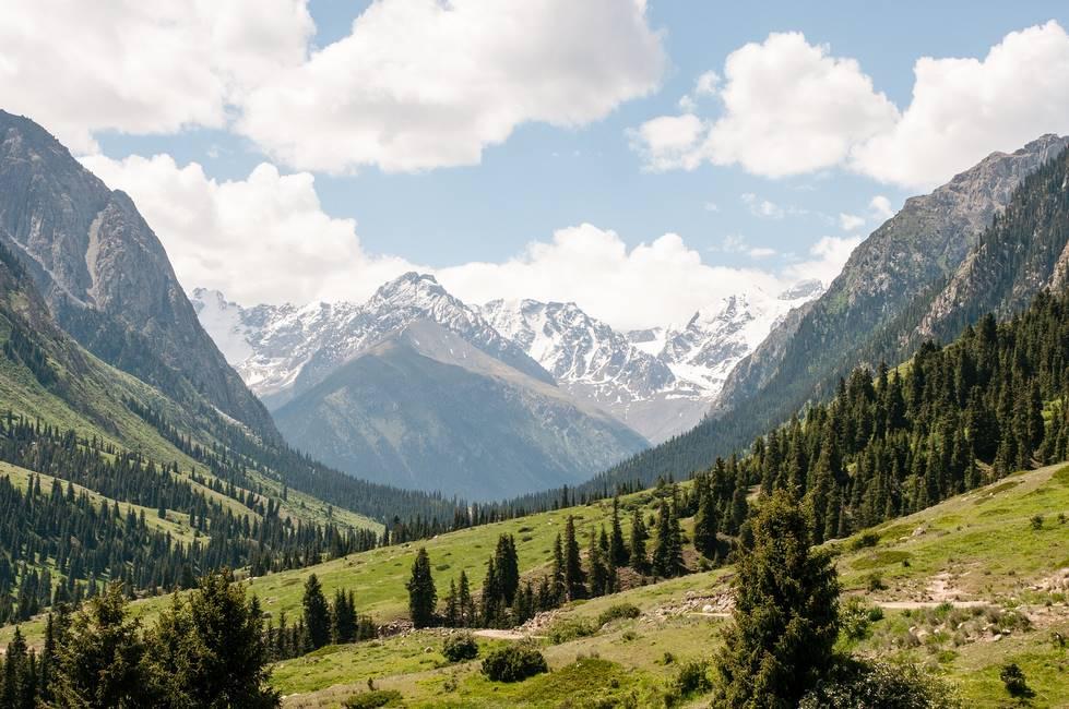 Paysage de la vallée d'Altyn Arachan au Kirghizistan