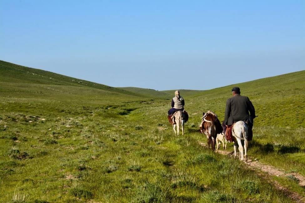 Balade à cheval dans les montagnes de Nourata en OUzbékistan