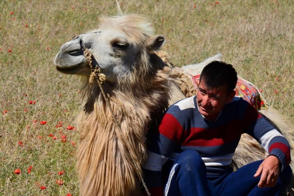 Berger ouzbek avec son chameau