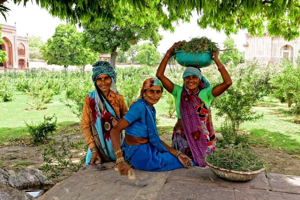 Vie rurale au Rajasthan dans le nord de l'Inde