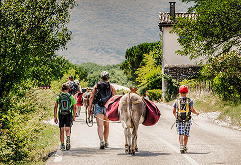 Balade à dos d'âne en Ardèche